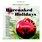 Barenaked For The Holidays (Full Length Release)
