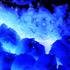 Avatar för polvopinguim