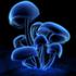 Avatar för elmapetos