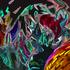 Avatar di lubberbob99