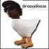 Avatar for GroovyGoose