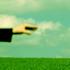 Avatar for krushgroove