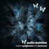 Avatar for audiomainline