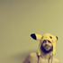 Avatar for lobo_tomizado