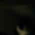 Avatar de ishyfishcat