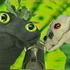 Avatar for Kirillow