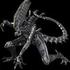 Avatar für PlagueBeast