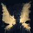Avatar de kateozzy2894