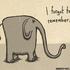 Avatar for pickledelephant