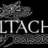 Avatar for celtachor