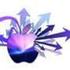 Avatar für SpringBlueMedia