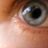 Avatar for blu-eyes