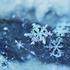 Avatar for snowfallsea