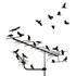 Avatar for illbird