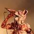 Avatar for Karribd