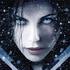 Avatar for faeriedragon