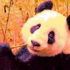 Avatar for fanta_panda