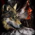 Avatar for Wolf_Geist