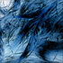 Avatar for phoenixonphyre