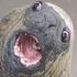 tekturvonkarton 的头像