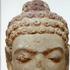 Avatar for Aphrobuddha