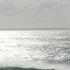 Avatar for Atlantide
