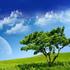 Avatar for air_julius