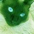 Avatar für marco-pt