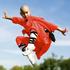 Avatar for Shaolin-Force