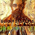 Avatar de burntsystems