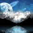 Avatar for Spacewalker62