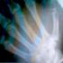 Avatar de SpringCold