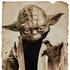 Avatar for YodaSolo