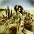 Avatar für Toph105