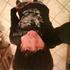 Avatar de FuCkInG_gOd9