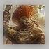 Avatar for Omvol_Dex