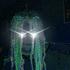 Avatar for Grav1x