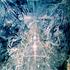 Avatar for Metal_Lust