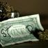 Avatar for cannabisjunk9