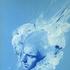 Avatar for dukeleeto