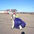 Avatar for skydiver934