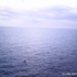Annamaria68 için avatar