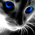 Avatar for Chaos_Kitty