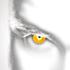 Avatar di Kolby_