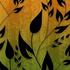 Avatar for orangegreen-eh