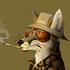 Avatar for NamelessFox