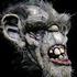 Avatar for BadTroll666