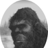 Avatar for soundsquatch