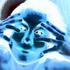 Avatar for LeonardoBano