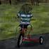 Avatar for roadrunner880